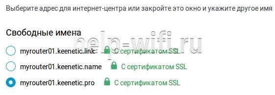 выбрать одно доменное имя