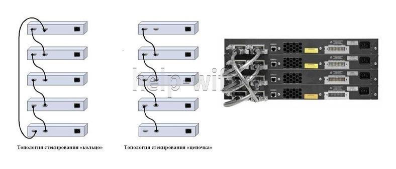 схема стекирования коммутаторов